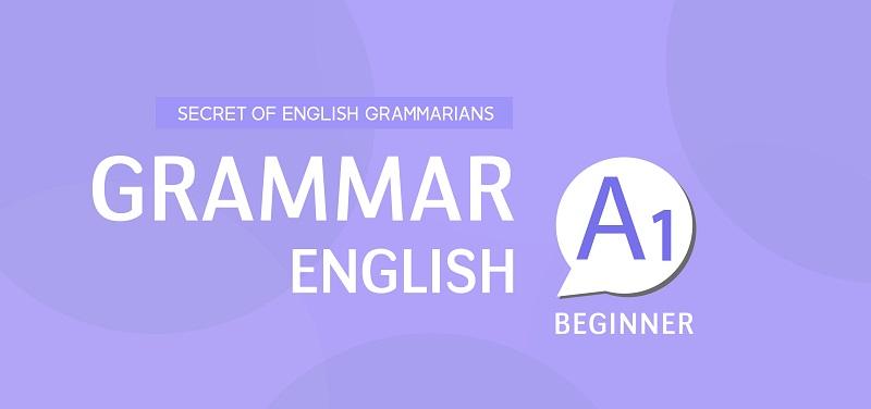 BASIC GRAMMAR (A1)